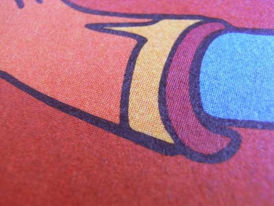 PR-77-015-Racoons-Close-Up-D